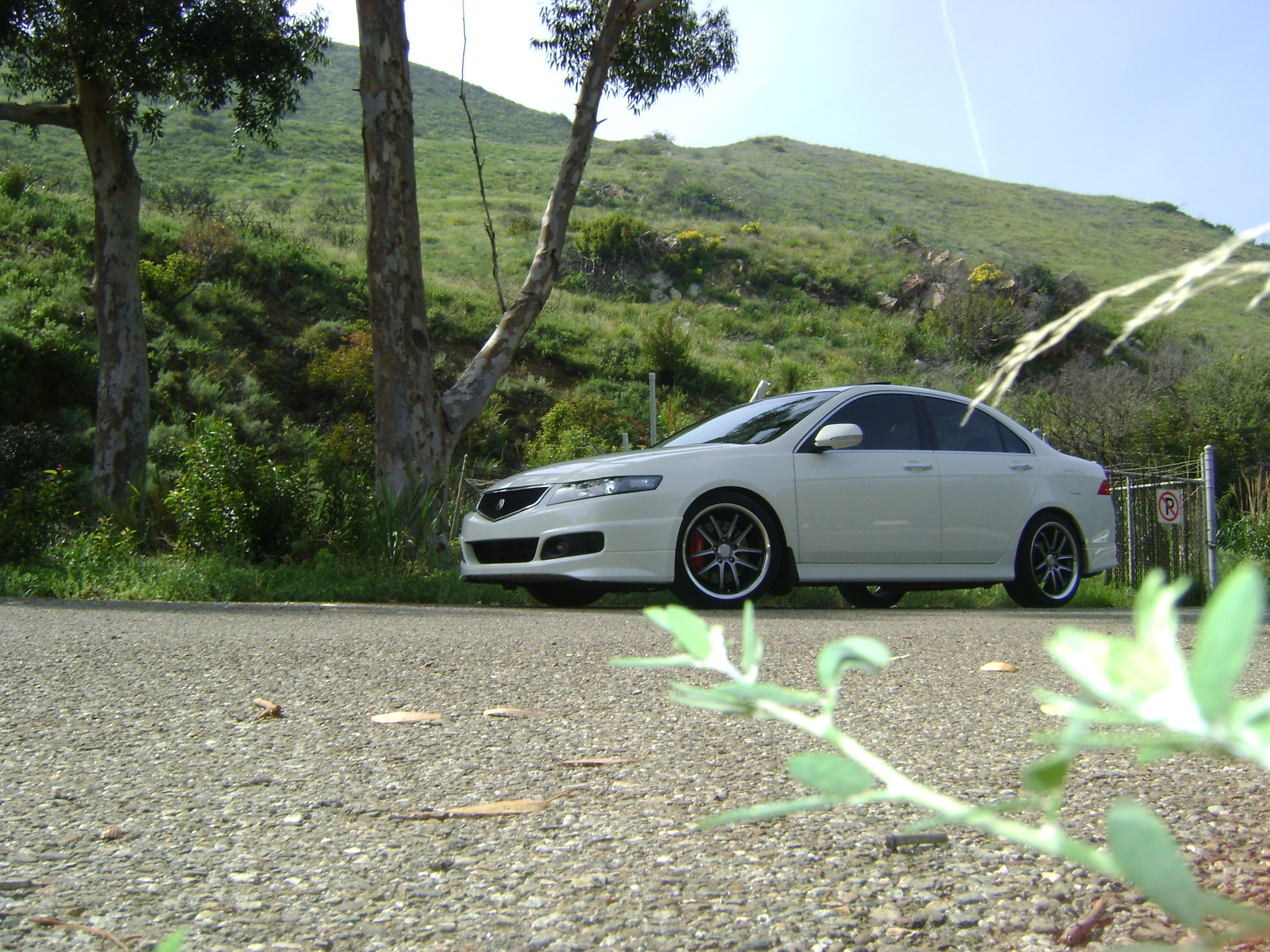 Projecttsx 2006 Acura Tsx Specs Photos Modification Info