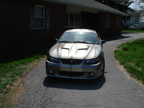Another GinoSTANG 2002 Ford Mustang post... - 10547724