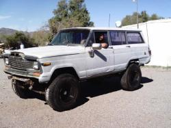 Snowbird_Hunter 1979 Jeep Wagoneer