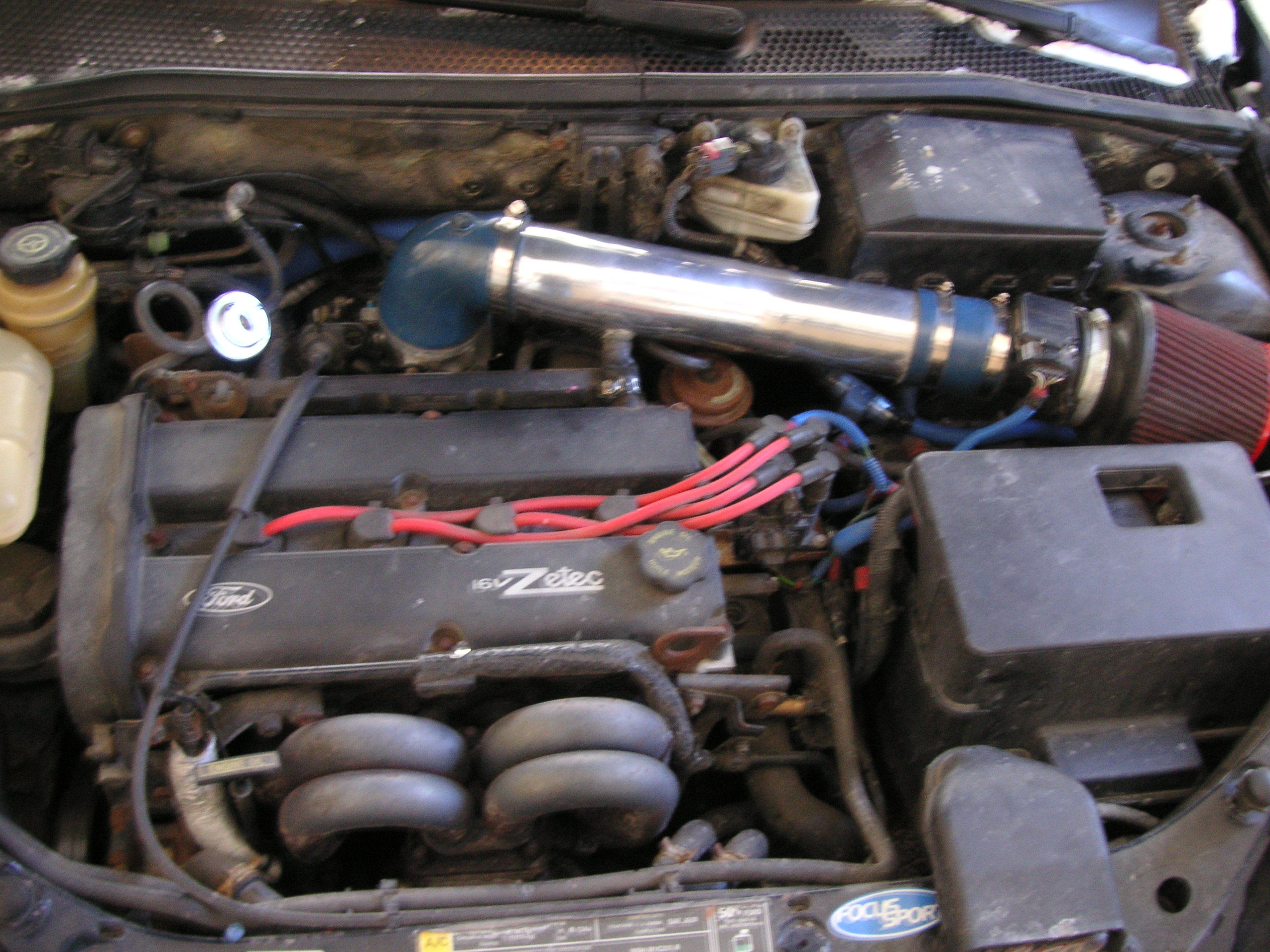 Another Ackermke 2000 Ford Focus post... - 9317476