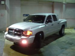 BMarut 2005 Dodge Dakota Regular Cab & Chassis
