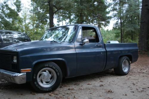 REAPERSBLUETRUCK's 1981 Chevrolet Scottsdale