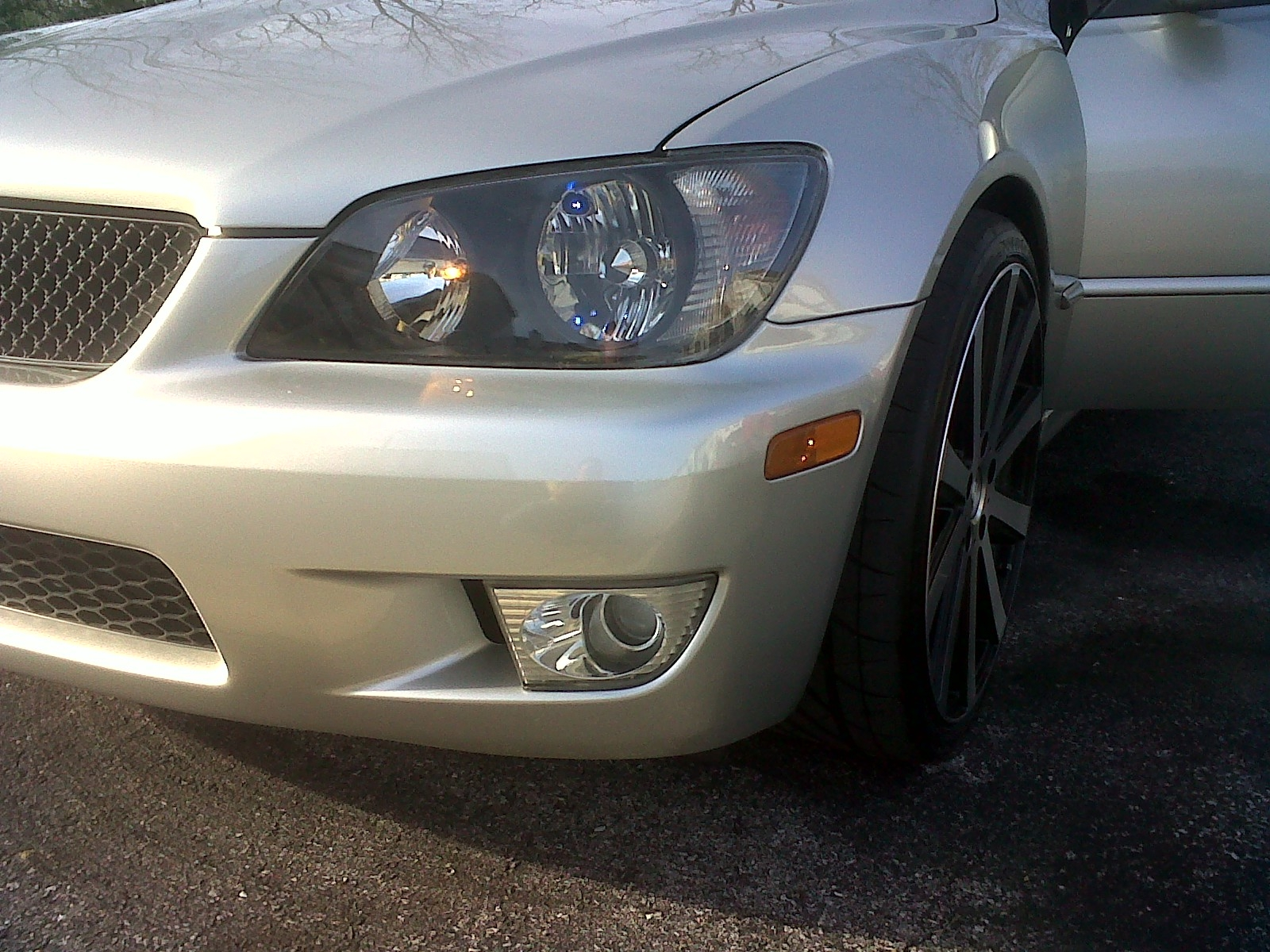 Speed03lex 2003 Lexus IS 10629529