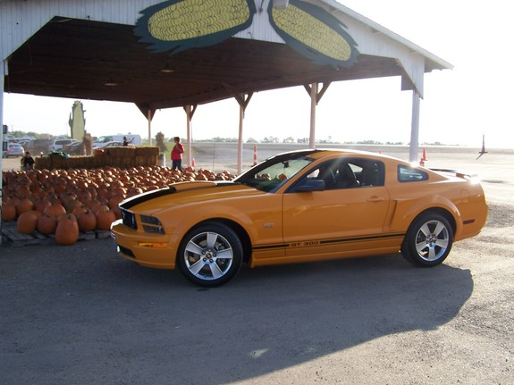 RAWLINSS 2007 Ford Mustang