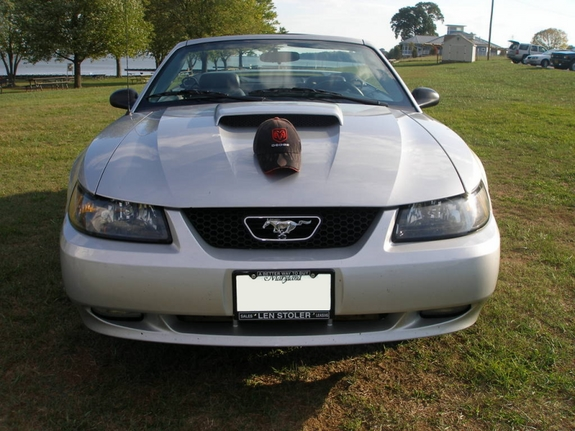 irsmart2004 2003 Ford Mustang