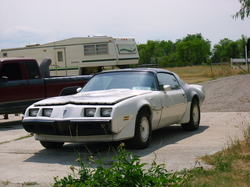 GMC-Eclipses 1981 Pontiac Firebird