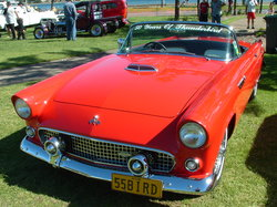 fiftyfiveford 1955 Ford Thunderbird
