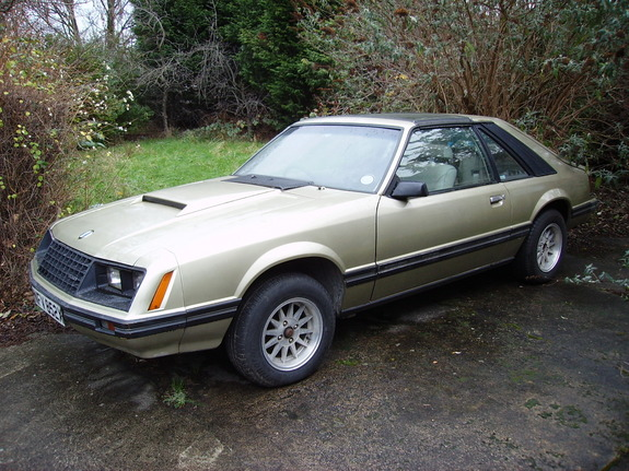 pacecarsteve 1981 ford mustang specs photos modification. Black Bedroom Furniture Sets. Home Design Ideas
