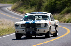 gfaules 1965 Shelby GT350