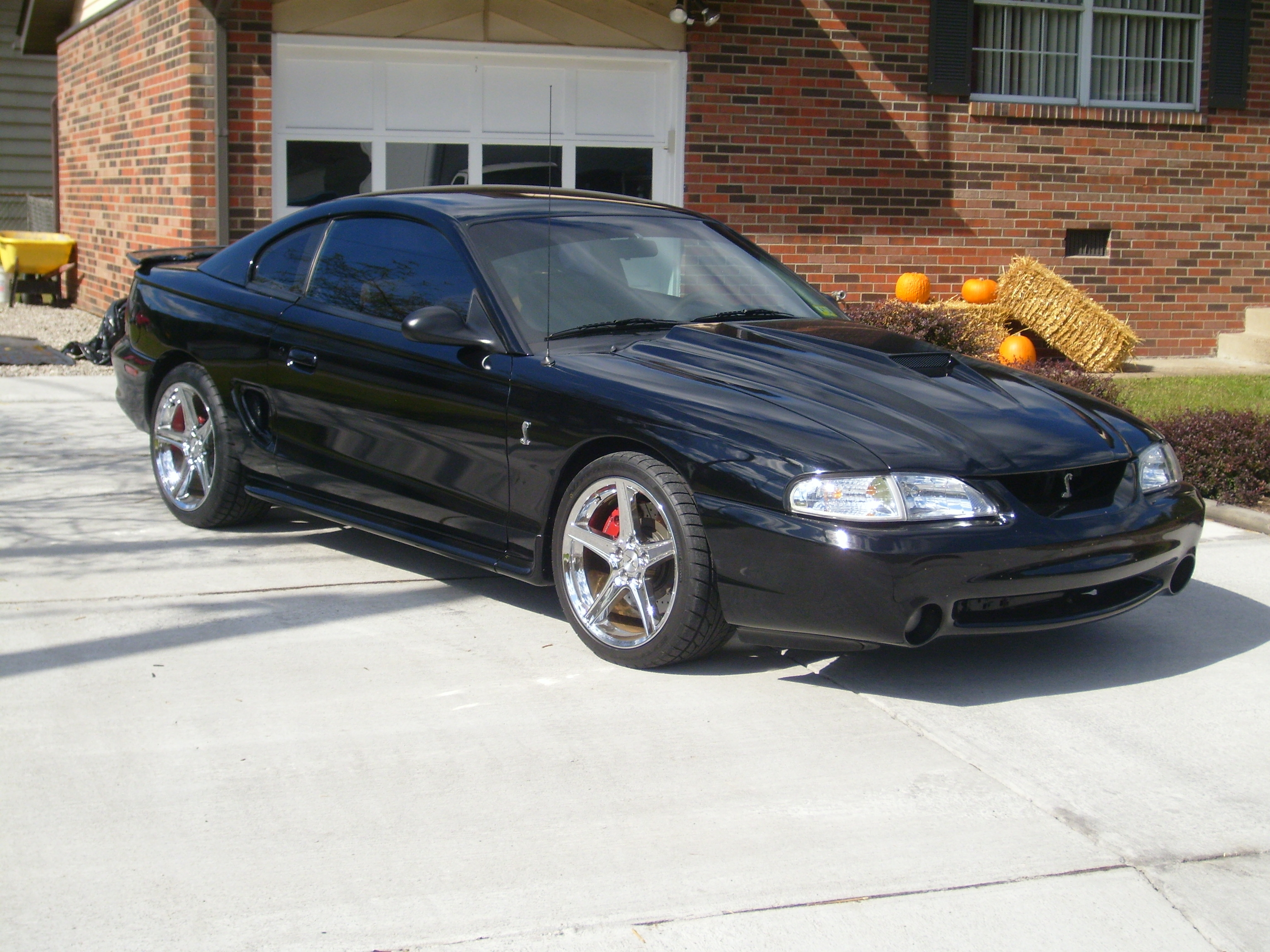 TODDFIVEOH 1997 Ford Mustang Specs Photos Modification