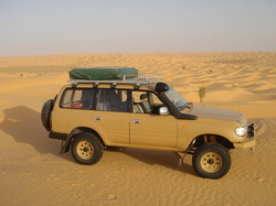 Hzj80s 1995 Toyota Land Cruiser