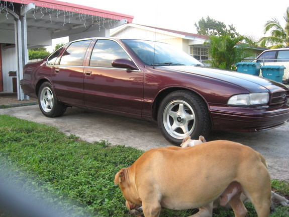nickel9ent 1996 Chevrolet Impala