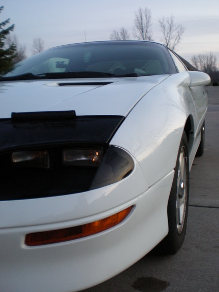 Another BearWithChainsaw 1995 Chevrolet Camaro post... - 10879910