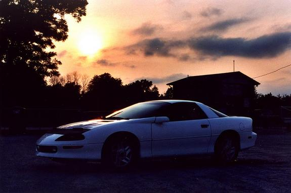 Another BearWithChainsaw 1995 Chevrolet Camaro post... - 10879917