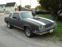 soopedupolds 1981 Oldsmobile Cutlass Calais