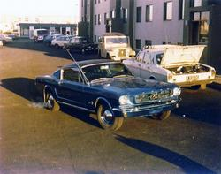 ICY_Cobras 1965 Ford Mustang