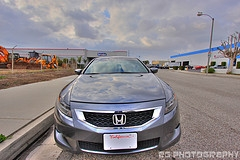 woody4364s 2008 Honda Accord