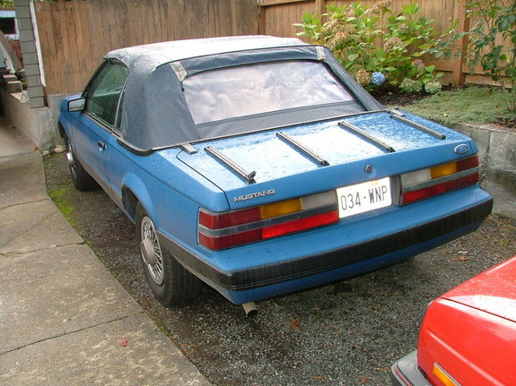 Another geofferito 1985 Ford Mustang post... - 10857171