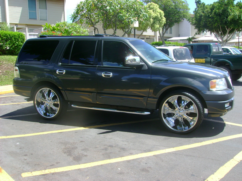 BIGMARQ74 2003 Ford Expedition Specs Photos Modification Info at