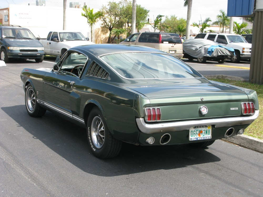 hivewax 1966 Ford Mustang 10880435