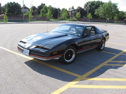 1987FormulaWS6s 1987 Pontiac Firebird