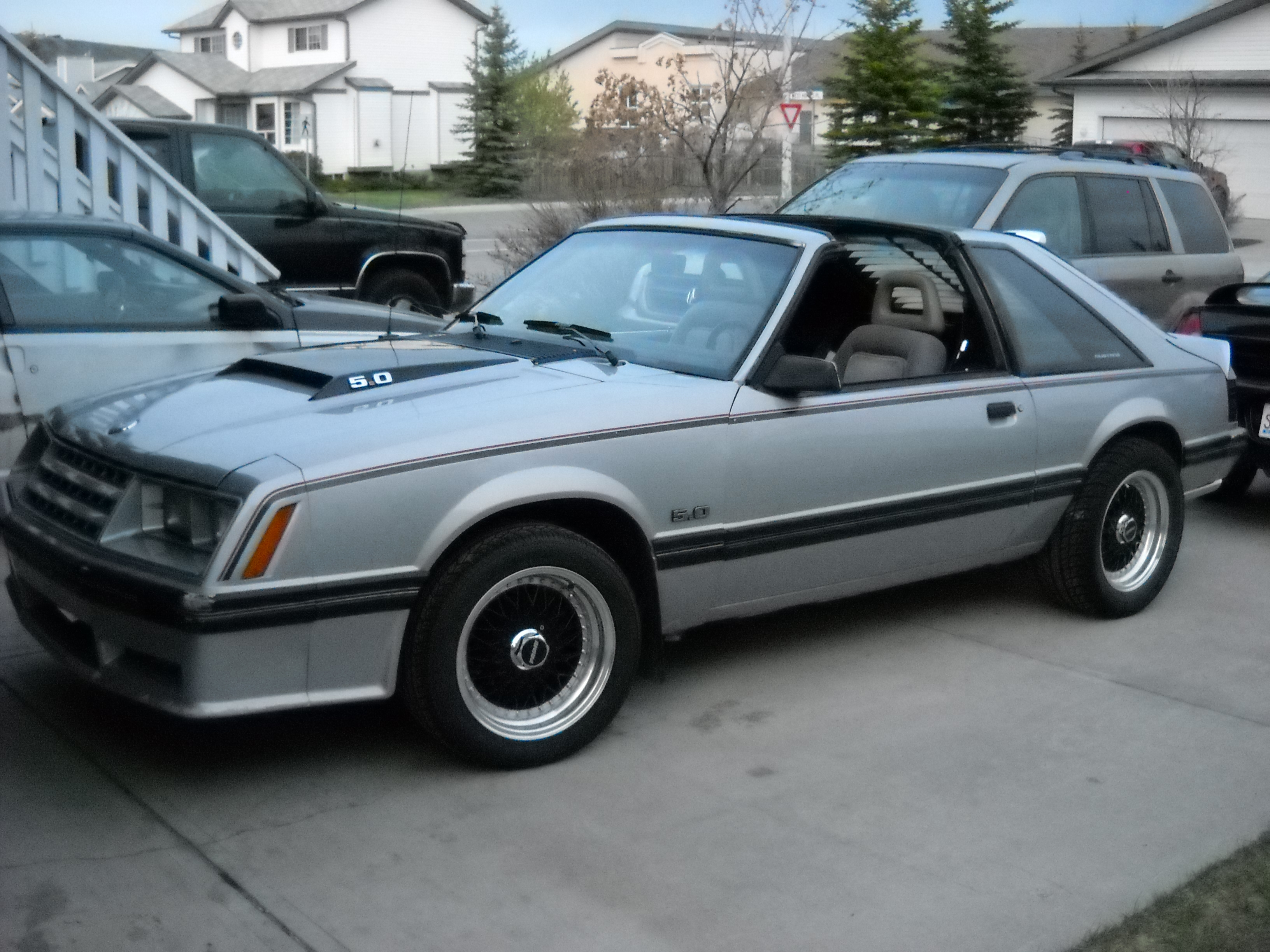 silver stangergt 1982 ford mustang specs photos modification info at cardomain. Black Bedroom Furniture Sets. Home Design Ideas