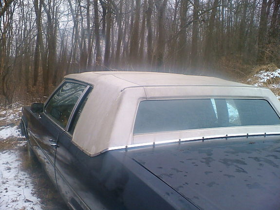 Another cadillacman609 1983 Cadillac DeVille post... - 10917518