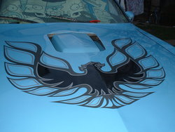 sirenglishfireb 1980 Pontiac Firebird