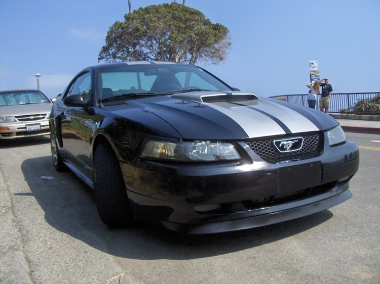 dansgts 2003 Ford Mustang