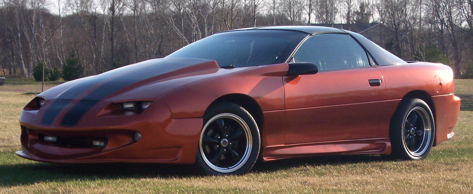 Another bigloser5 1995 Chevrolet Camaro post... - 10936003