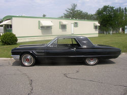 Donzies 1965 Ford Thunderbird