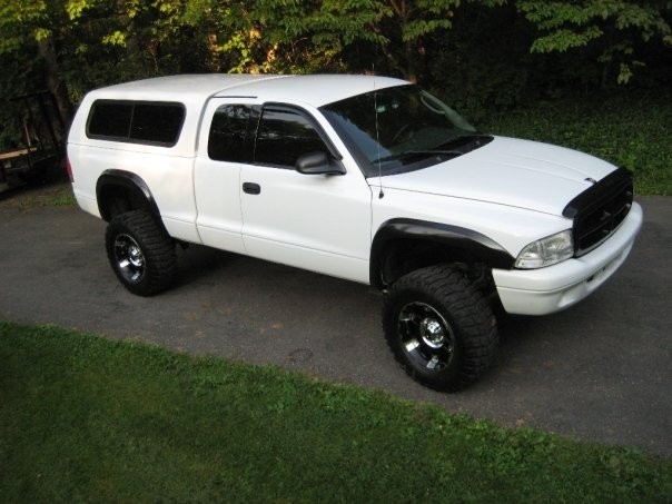 Large on 2002 Dodge Dakota Regular Cab