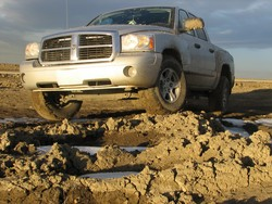 DakotaBoulevard 2005 Dodge Dakota Regular Cab & Chassis