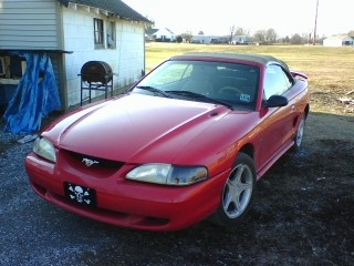 Another StreetSierra 1996 Ford Mustang post... - 11018242
