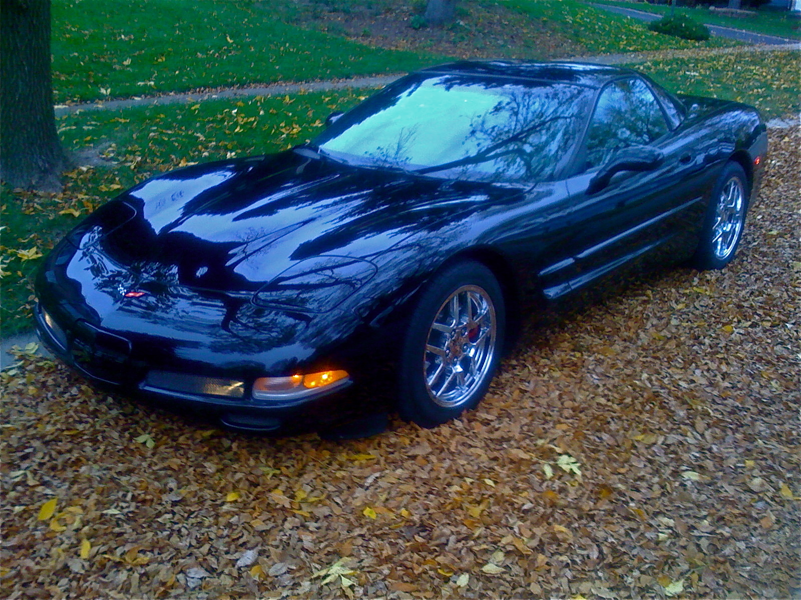 johnsos30's 1999 Chevrolet Corvette