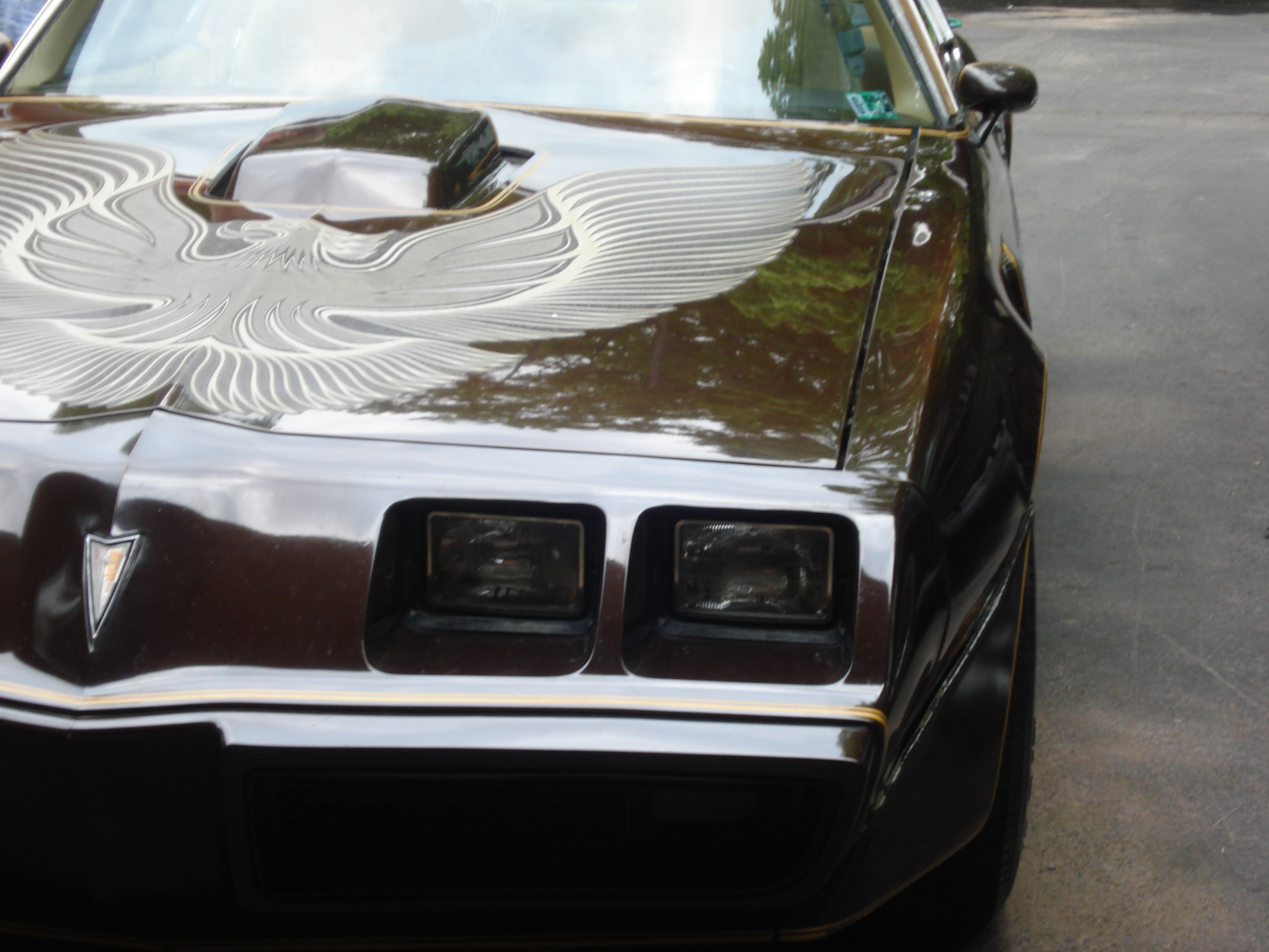 Another 7297172 1981 Pontiac Trans Am post... - 11037374