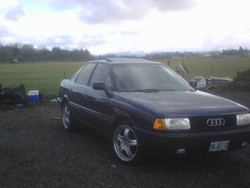 audifreek 1988 Audi 80