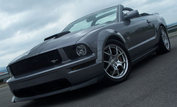Another TMSBrad 2006 Ford Mustang post... - 11060544
