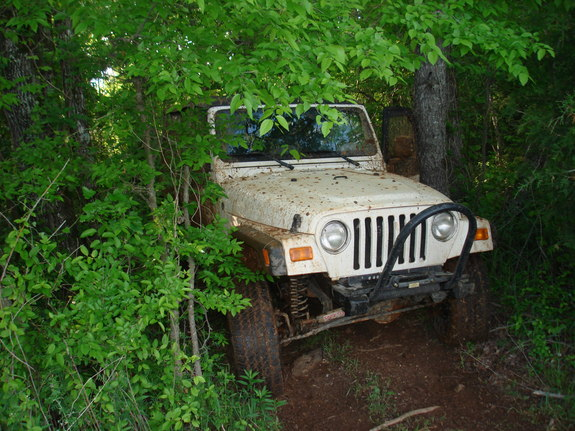 Michaeljames_62 2003 Jeep TJ 11088670