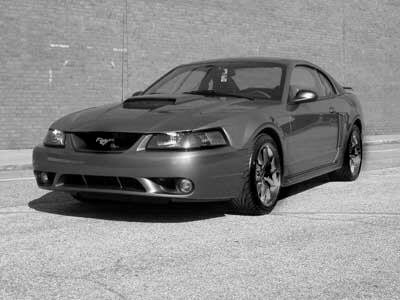 metalmulisha486 39 s 2003 ford mustang in phoenix az. Black Bedroom Furniture Sets. Home Design Ideas