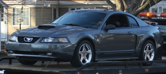 Dseeger04 2004 Ford Mustang