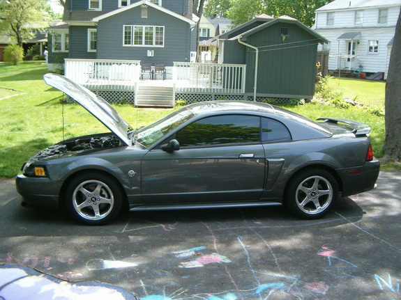 Another Dseeger04 2004 Ford Mustang post... - 11113088