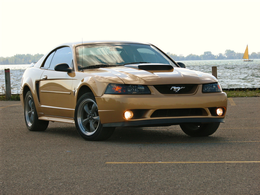 goldstang2k 39 s 2000 ford mustang in toronto on. Black Bedroom Furniture Sets. Home Design Ideas