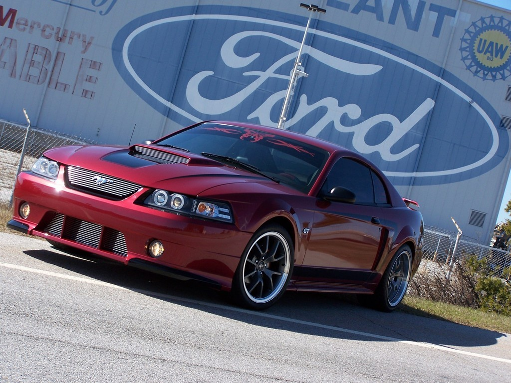Tinkerbell_too 2003 Ford Mustang
