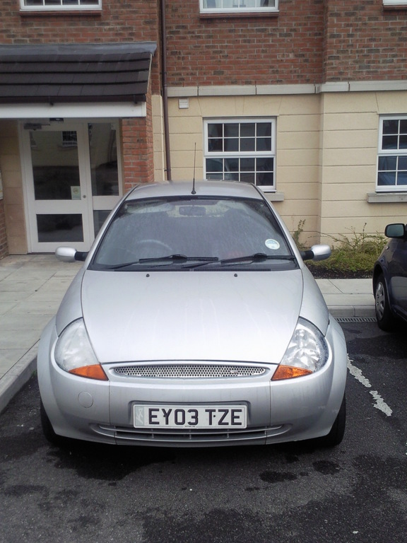 Another Kitten_198 2003 Ford Ka post... - 11163484
