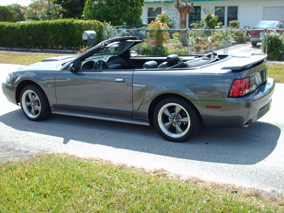Another 2235mustang 2003 Ford Mustang post... - 11160454