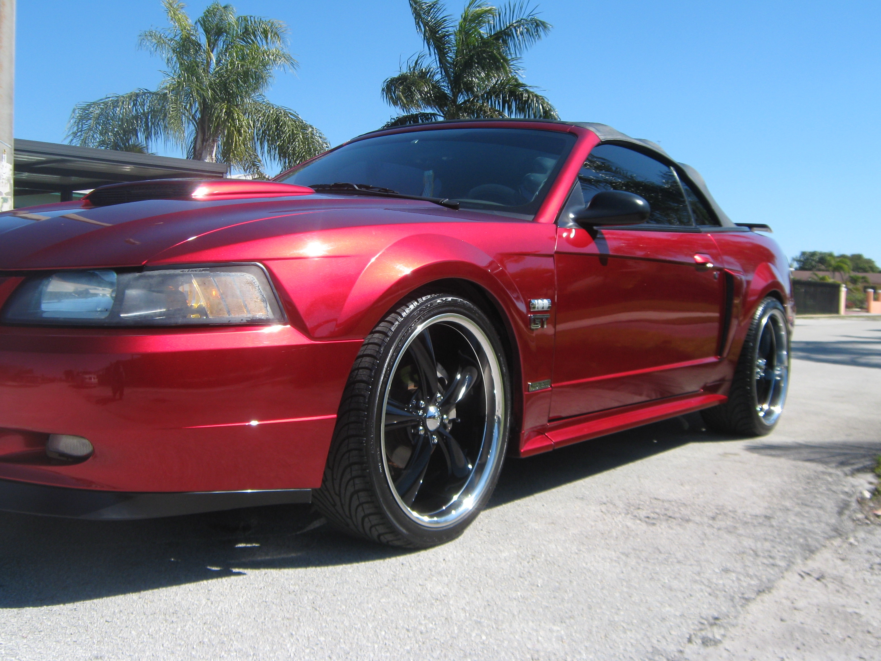 Another 2235mustang 2003 Ford Mustang post... - 11160463