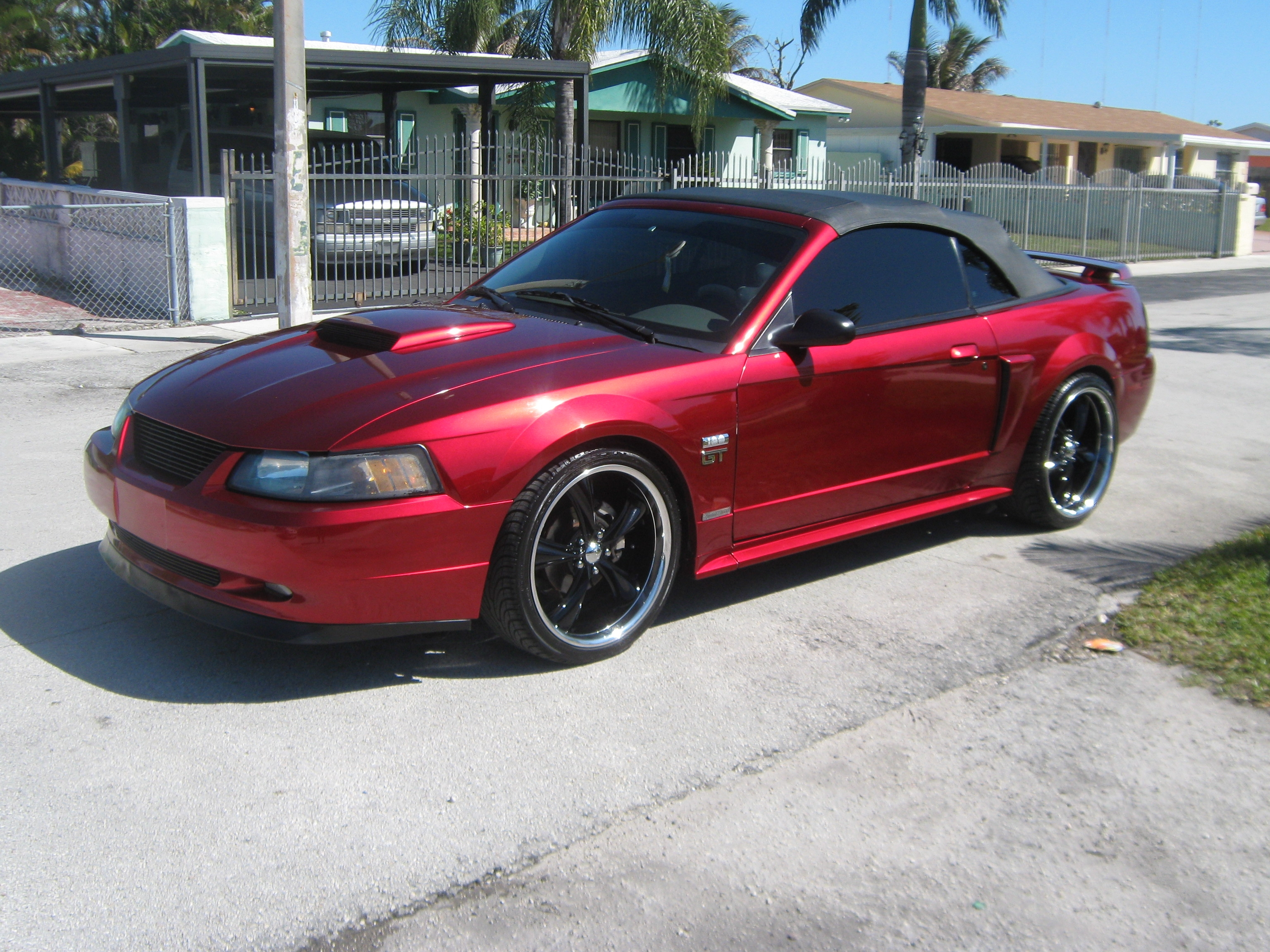 Another 2235mustang 2003 Ford Mustang post... - 11160471