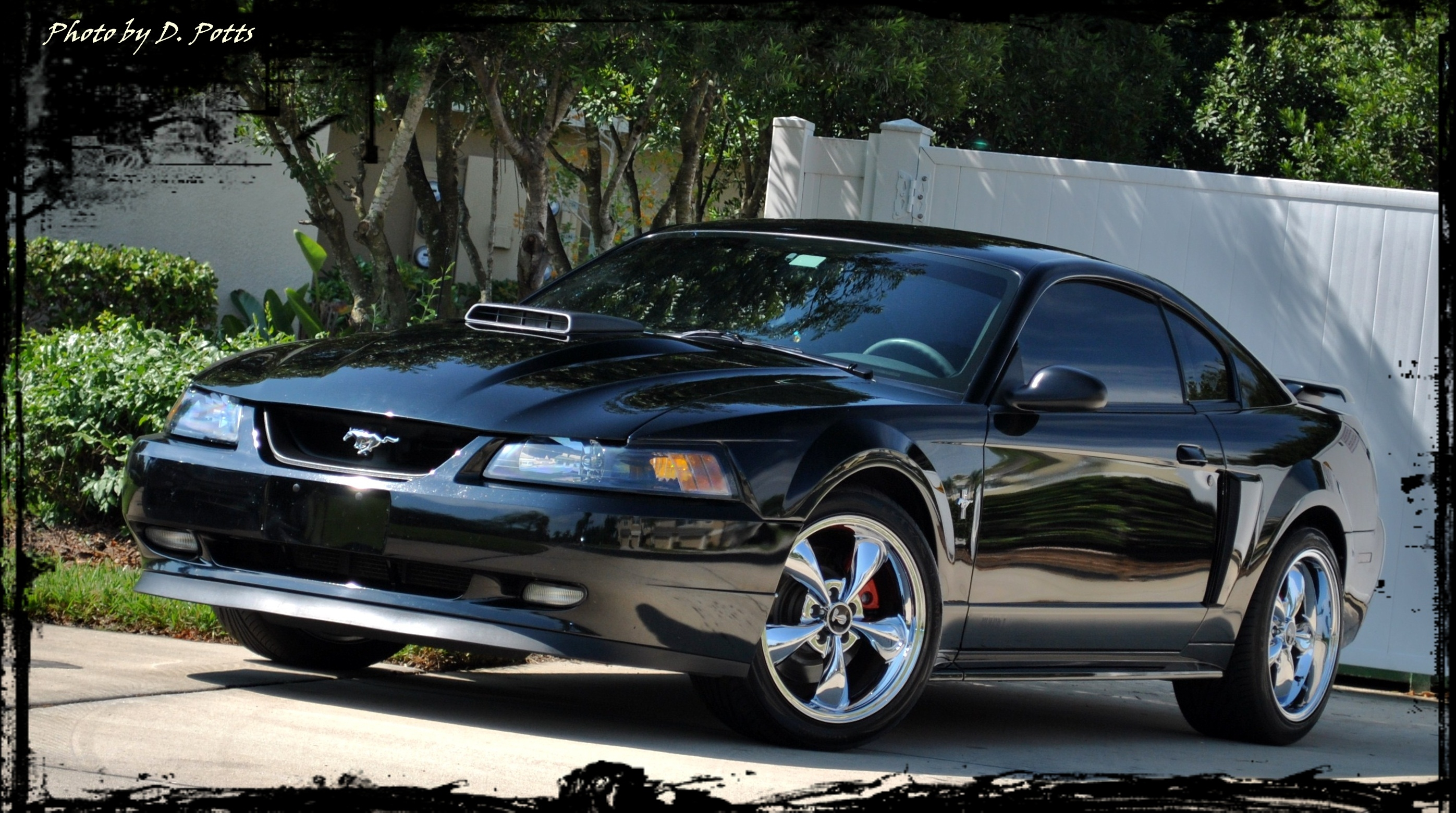 Aque509 2003 Ford Mustang