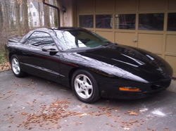 Dans_Birds 1996 Pontiac Firebird